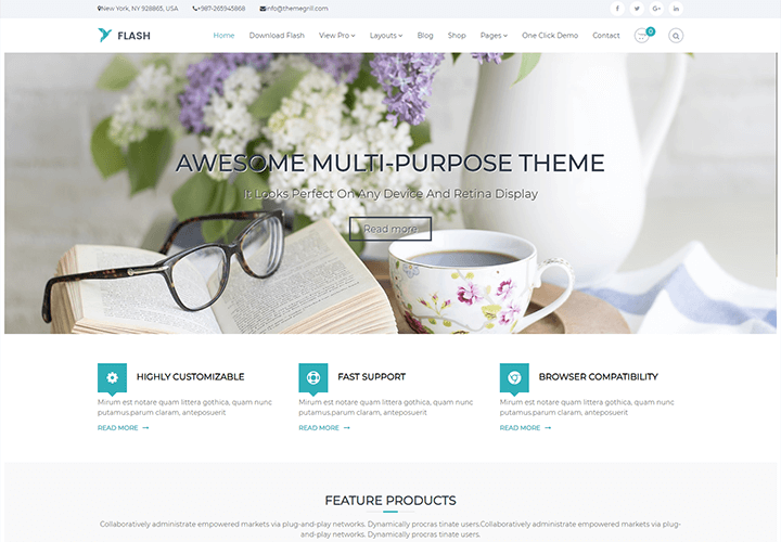 Download Free Flash WordPress Theme