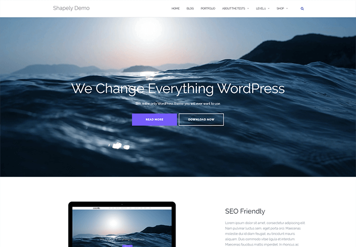 Free Shapely WordPress Theme